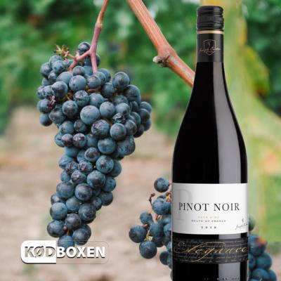 Joseph Castan - Elégance Pinot Noir