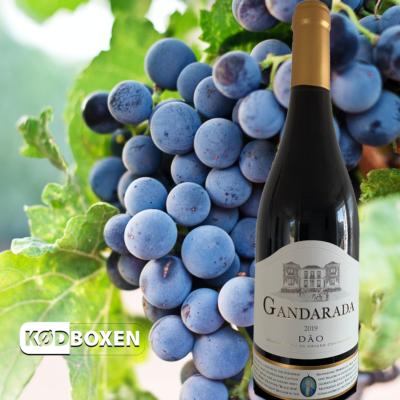 Gradarada Dao 2019 Rødvin